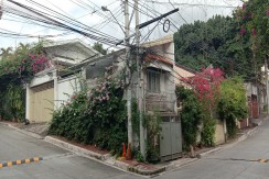 House and Lot for Sale at South EE  (Scout Area) Quezon City