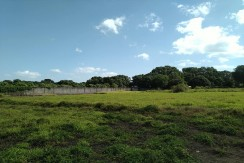 1.5 Hectares Lot for Sale in Sulivan, Baliuag, Bulacan