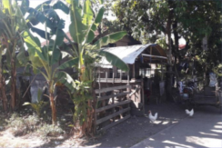 398 sqm Farmlot For Sale in Gloria, Oriental Mindoro